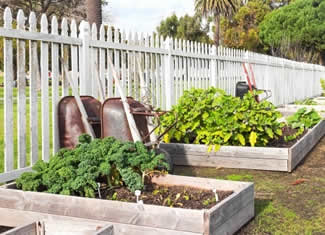 Building raised garden beds - DIY